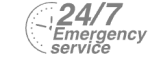 24/7 Emergency Service Pest Control in Paddington, W2. Call Now! 020 8166 9746